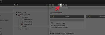 Screenshot: Seiten- oder Inhaltseigenschaften im Typo3 Menü aufrufen